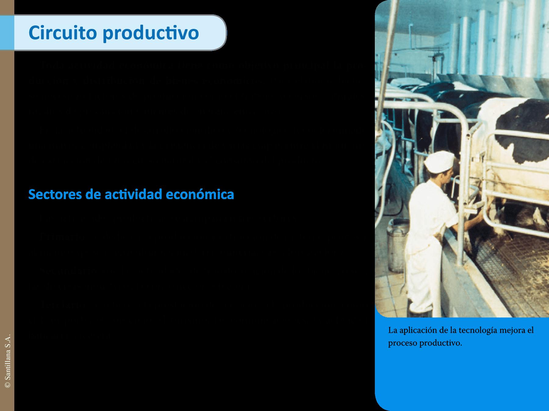 Circuito Productivo Del Tomate : Circuito productivo del tomate para tercer grado el de la